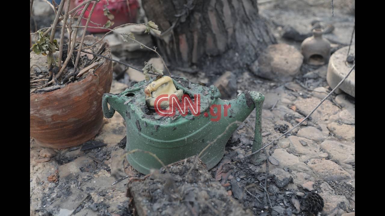 https://cdn.cnngreece.gr/media/news/2018/07/23/139877/photos/snapshot/4314355376_LP2_3823.jpg