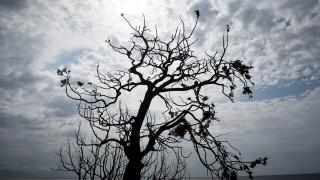 Μαύρη ημέρα για την Ελλάδα: Θάνατος κι αποκαΐδια από την φωτιά στην Αττική