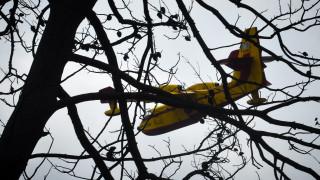 Φωτιά Αττική: Μέτρα στήριξης των πληγέντων ανακοίνωσε το υπουργείο Εργασίας