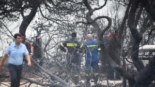 Φωτιά Αττική: Άμεση χαρτογράφηση των περιοχών που έχουν πληγεί από τις δασικές πυρκαγιές