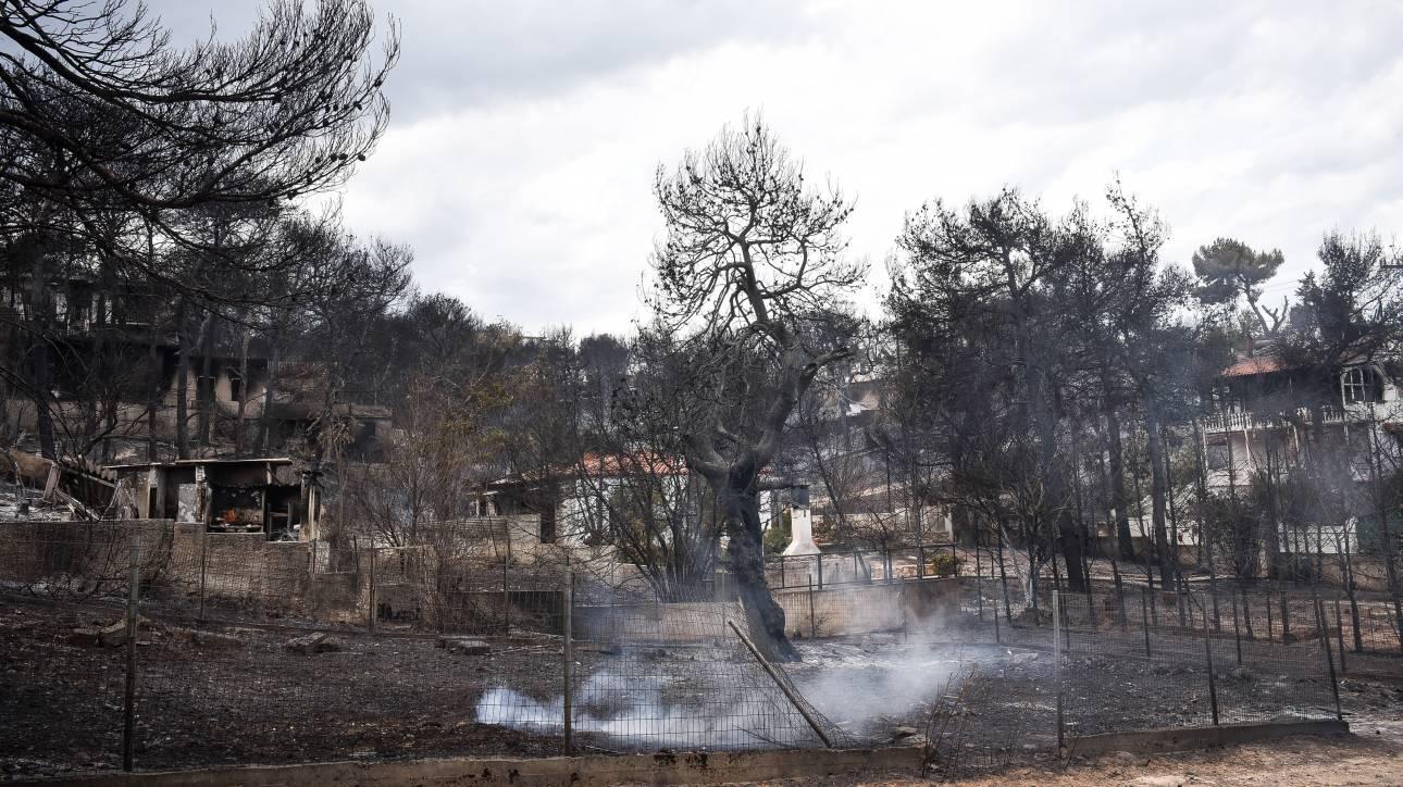 Δήμαρχος Ραφήνας: Έχει αλλάξει το τοπίο, ζούμε μια άλλη πραγματικότητα