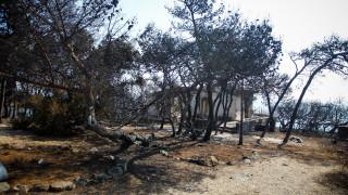 Φωτιά Αττική: Εφάπαξ ενίσχυση 5.000 ευρώ για τους πυρόπληκτους
