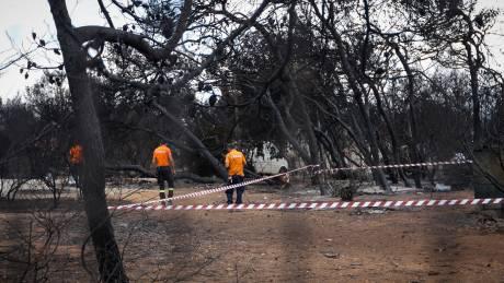 Στις φλόγες η Αττική: Σοβαρές ενδείξεις εμπρησμού και ύποπτα ευρήματα, λέει η κυβέρνηση