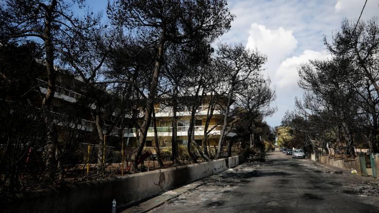 Τα αποτελέσματα των αυτοψιών των κτιρίων στις πληγείσες περιοχές