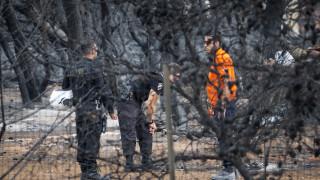 Χρ. Ζερεφός: Η χώρα πρέπει να θωρακιστεί απέναντι στις πυρκαγιές