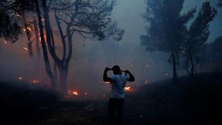 Φωτιά Αττική: Ο ρόλος των μετεωρολογικών συνθηκών και γιατί εξαπλώθηκε τόσο γρήγορα