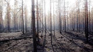Στη Σουηδία σβήνουν τις φωτιές με… βόμβες