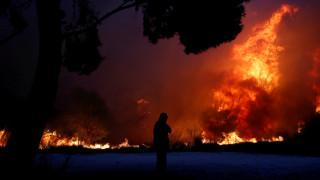 Η ισχύς εν τη ενώσει: Οι Unboxholics συγκέντρωσαν πάνω από 29.000€ για τους πυρόπληκτους