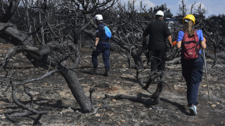 Πυρκαγιά Αν. Αττικής: Η εύκολη κριτική και αυτό που δεν θα ξεχάσουμε…