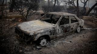 Φωτιές Ανατ. Αττική: Αλληλεγγύη στους πυρόπληκτους από τους Γερμανούς Πράσινους