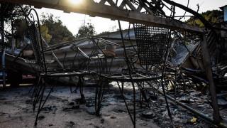 Φωτιά Αττική - Καταγγελία δημάρχου Ραφήνας: «Περιφερειακή σύμβουλος πλαστογράφησε έγγραφο»