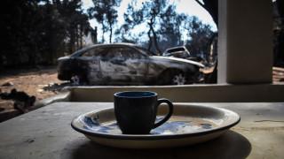 Φωτιά Αττική: «Η κλιματική αλλαγή δεν είναι δικαιολογία» τονίζουν περιβαλλοντικές οργανώσεις