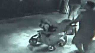 Τέξας: Έκλεψαν καρχαρία από ενυδρείο και τον έντυσαν «μωρό» (vid)
