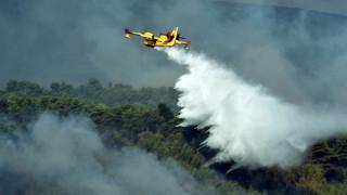 Μαίνεται η φωτιά στην Πάρο - Υπό μερικό έλεγχο οι πυρκαγιές σε Εύβοια και Ζάκυνθο