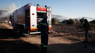 Υπό μερικό έλεγχο οι φωτιές σε Εύβοια και Πάρο - Σε ύφεση αυτή της Ζακύνθου