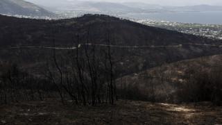 Δασοφύλακες για τη φωτιά στο Μάτι: Η μάχη χάθηκε στην Πεντέλη