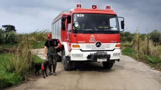 Πολύ υψηλός ο κίνδυνος πυρκαγιάς αύριο - Ποιες περιοχές κινδυνεύουν