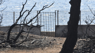 Καταπατημένη δασική έκταση το οικόπεδο όπου πέθαναν 27 άνθρωποι στο Μάτι