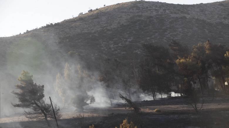 Φωτιά Αττική: Ποινική δίωξη για κακούργημα κατά του 35χρονου για τους εμπρησμούς στον Μαραθώνα
