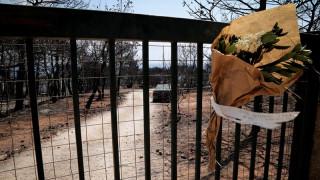 Φωτιά Αττική: Περισσότερες από χίλιες οι αιτήσεις πυρόπληκτων για το έκτακτο επίδομα