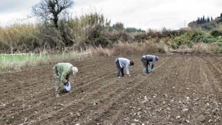Οικονομική βοήθεια στους αγρότες που πλήττονται από την ξηρασία προσφέρει η Κομισιόν