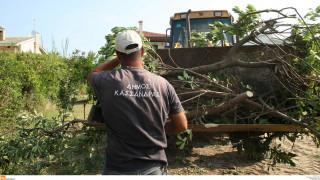 Επιφυλάξεις περιβαλλοντικών οργανώσεων για τη νέα ρύθμιση για τα αυθαίρετα