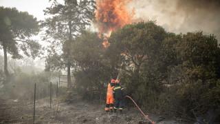 Φωτιά Κινέτα: Ενίσχυση στους πυρόπληκτους από τρία επιμελητήρια του Πειραιά