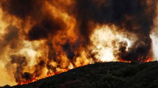 Πορτογαλία: Πάνω από 400 πυροσβέστες δίνουν μάχη με τις φλόγες