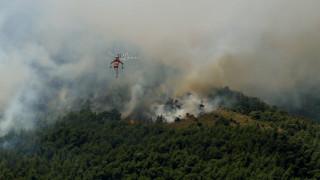 Οδηγίες προστασίας από τις δασικές πυρκαγιές
