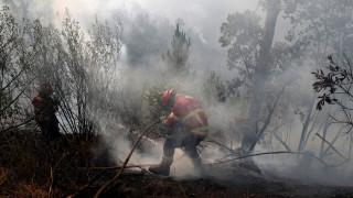 Ασφυκτικός καύσωνας και πυρκαγιές στην Ευρώπη