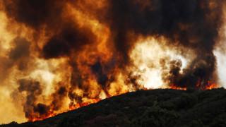 Αντιμέτωπη με τη μεγαλύτερη πυρκαγιά στην ιστορία της η Καλιφόρνια