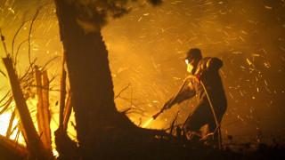 Μάχη με τις φλόγες στη Ζάκυνθο