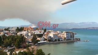 Πυρκαγιά σε εξέλιξη στην Εύβοια-Υπό μερικό έλεγχο η φωτιά στο Κορωπί