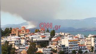 Πυρκαγιά Εύβοια: Εντολή εκκένωσης δύο οικισμών