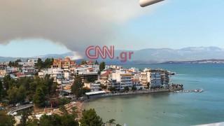 Πυρκαγιά Εύβοια: Τα πρώτα βίντεο από το πύρινο μέτωπο