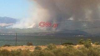 Πυρκαγιά Εύβοια: Είναι από τις πιο δύσκολες φωτιές που έχω δει, λέει ο δήμαρχος Γ.Ψαθάς