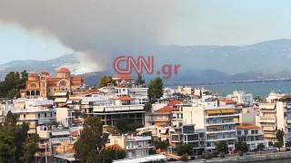 Πυρκαγιά Εύβοια: Μαίνεται το πύρινο μέτωπο