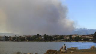 Πυρκαγιά Εύβοια: Έκλεισε η κυκλοφορία από Χαλκίδα προς βόρεια Εύβοια