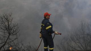 Πυρκαγιά Εύβοια: Εκκενώθηκαν δύο χωριά λόγω της φωτιάς που μαίνεται