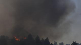 Πυρκαγιά Εύβοια: Συνεχής η ενημέρωση του πρωθυπουργού