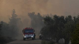 Πυρκαγιά Εύβοια: Την ελπίδα του να κερδηθεί η μάχη εκφράζει ο Κώστας Μπακογιάννης