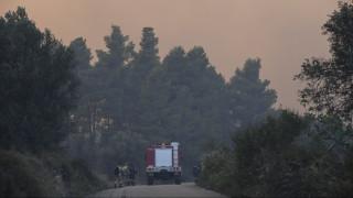 Πυρκαγιά Εύβοια: Για προληπτικούς λόγους οι εκκενώσεις δεν κινδύνευσαν ζωές, τονίζει ο Αποστόλου