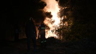 Πυρκαγιά Εύβοια: Ολονύχτια μάχη με τις φλόγες