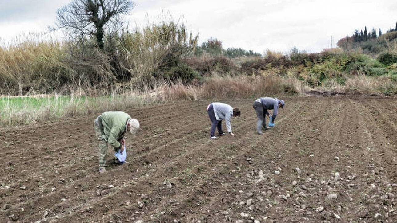Εξωδικαστικός μηχανισμός: Ισχνή η συμμετοχή των αγροτών