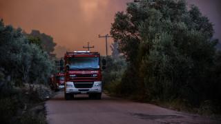 Φωτιά Εύβοια: Διάσπαρτες εστίες, χωρίς ενεργά μέτωπα
