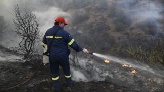 Πυρκαγιά Εύβοια: 12.000 στρέμματα δασικής έκτασης έγιναν στάχτη