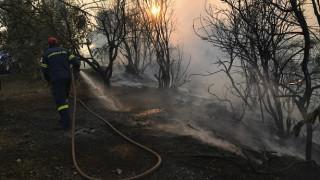 Καλύτερη η εικόνα της πυρκαγιάς στην Εύβοια