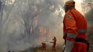 Υπό έλεγχο η μεγάλη πυρκαγιά στην Κύπρο - Συνελήφθη ένα άτομο