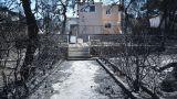 Φωτιές Αττική: 4.034 αιτήσεις για το επίδομα