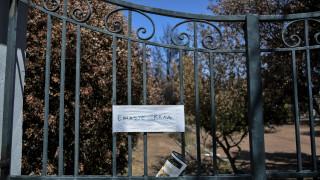 Φωτιές Αττική:  Στις 4.076 οι αιτήσεις πυρόπληκτων για το επίδομα